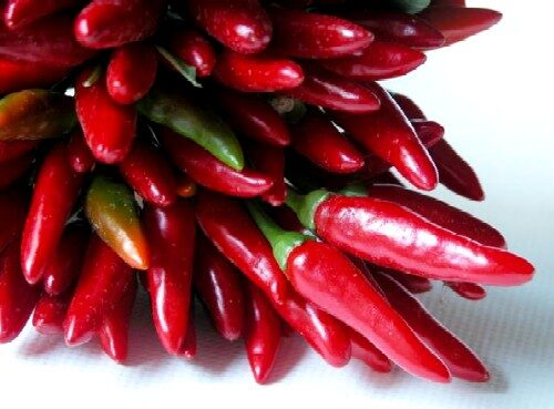 red-chilies