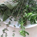herbs-4random%