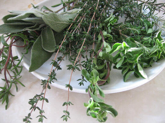 a list of herbs common to most kitchens that we can grow in your own backyards or kitchen window sills