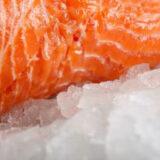 frozen-salmon-2random%