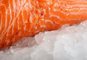 frozen-salmon