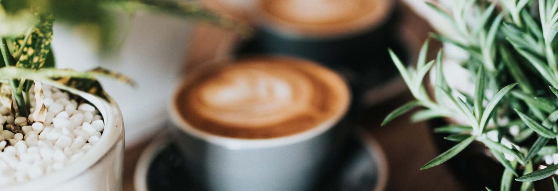 Coffee Reduces Risk of Basal Cell Carcinoma
