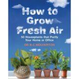 grow-fresh-air-4random%