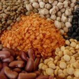 beans-protein-2random%