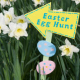 easter-egg-hunt-signrandom%